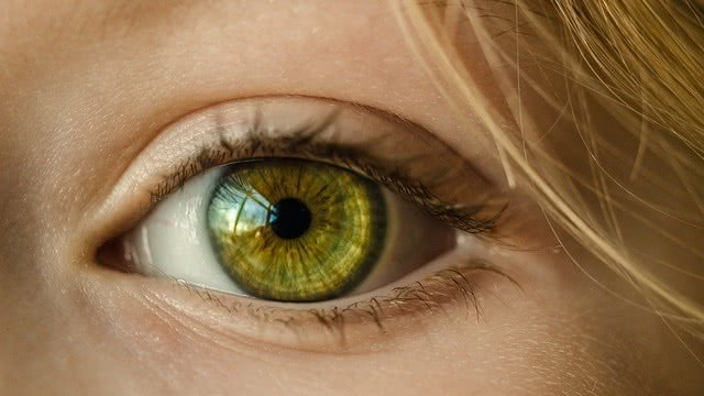 Имеющий глаза да прочтет: интересные факты о человеческом зрении