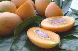 Персики, сливы, нектарин помогут бороться с ожирением и диабетом