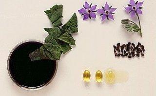 Противозачаточные средства растительного происхождения