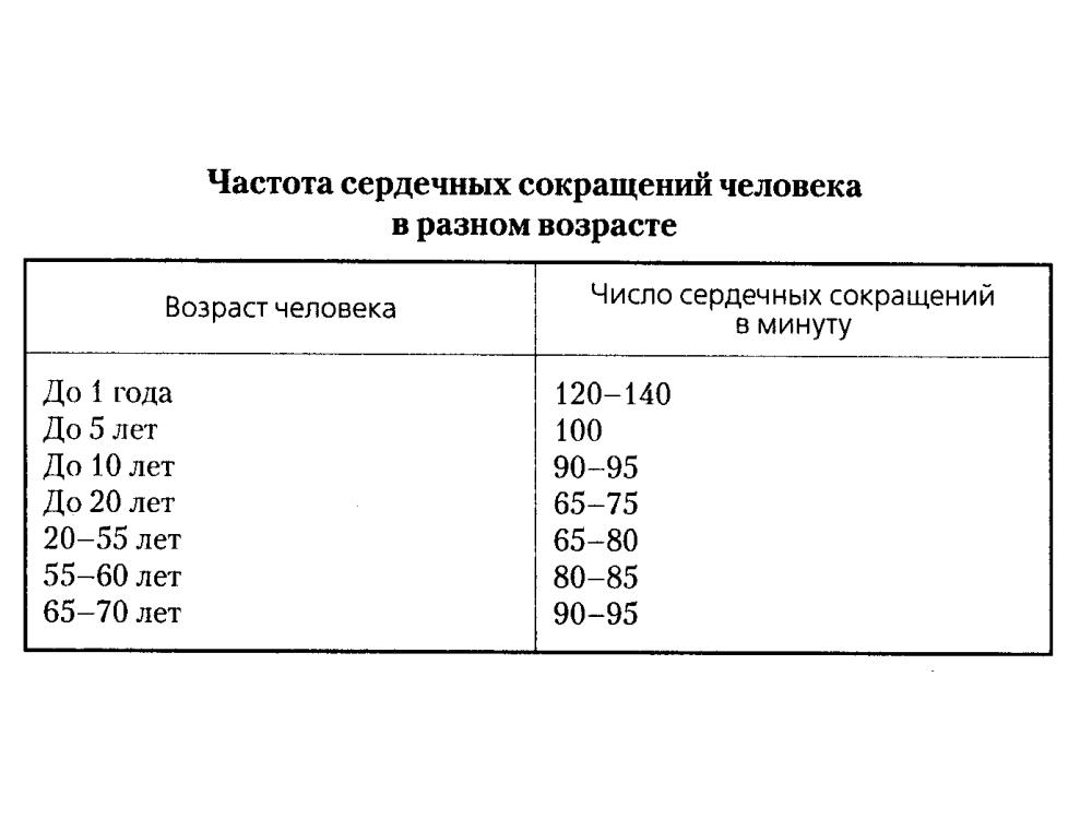 Нормы частоты пульса