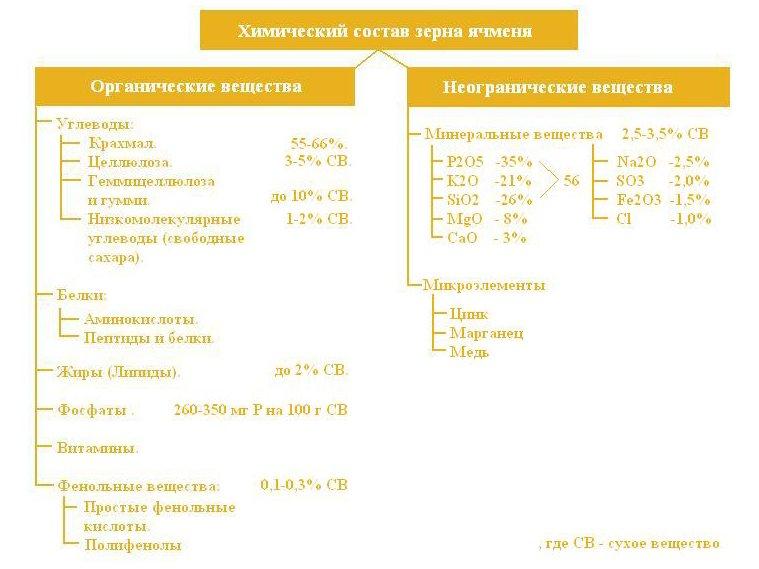 Химический состав зерна ячменя