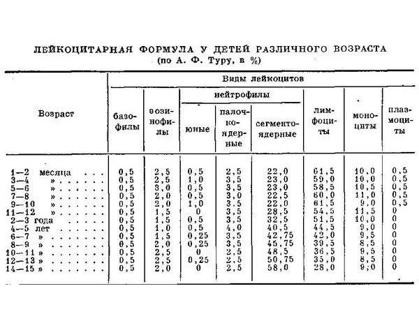 Лейкоцитарная формула у детей
