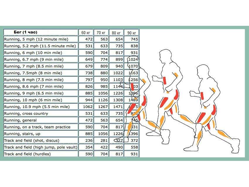 Таблица сжигания калорий при беге