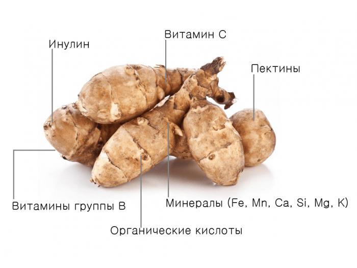 Полезные вещества в топинамбуре
