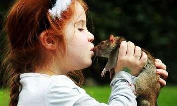 Девочка целует крыску
