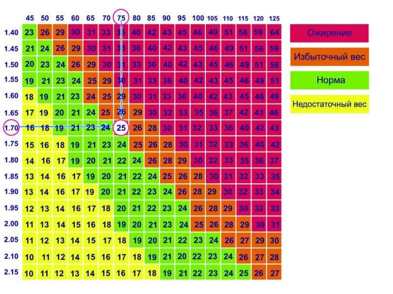 Таблица норм ИМТ