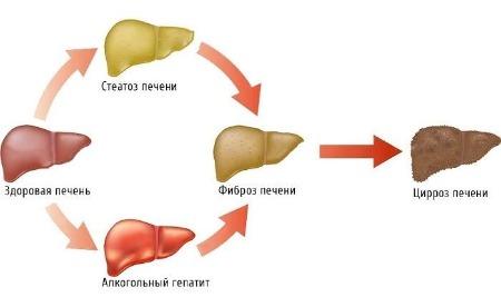 не лечить гепатит с