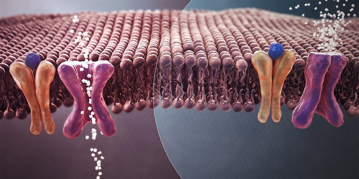 Высыпания на коже могут возникать после иммунотерапии или таргетной терапии. Эти методы борьбы с раком считаются самыми новыми и перспективными, однако, побочных эффектов не избежать. Внимательно наблюдайте за малейшими изменениями на своей коже, чтобы вовремя начать их коррекцию и лечение.